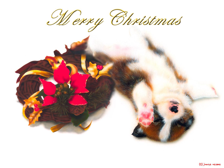 子犬の絵:Merry Christmas 〜クリスマスリースとコーギー〜