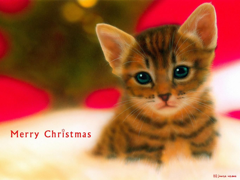 子猫の絵:Merry Christmas 〜クリスマスツリーとベンガル〜