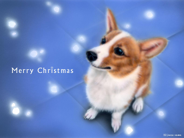 子犬の絵:White Christmas