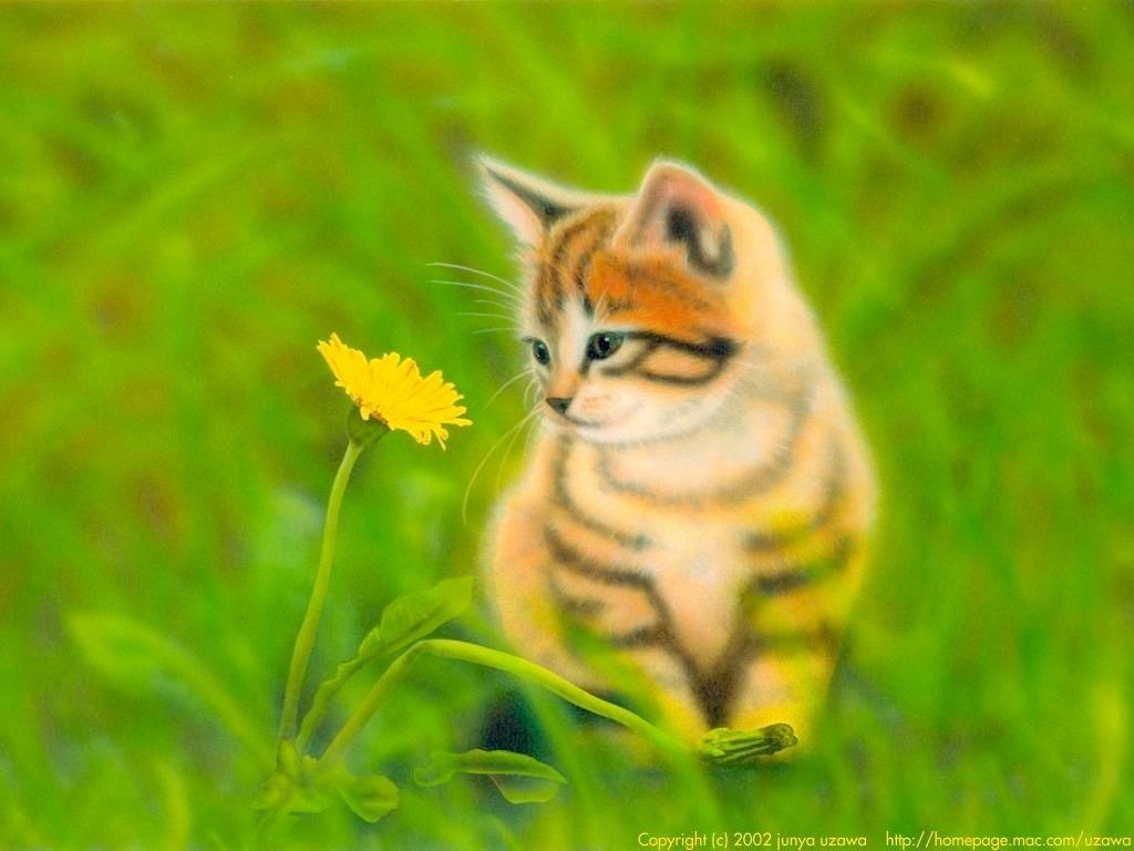 子猫の絵:春のにゃんこ ~ねことタンポポ~
