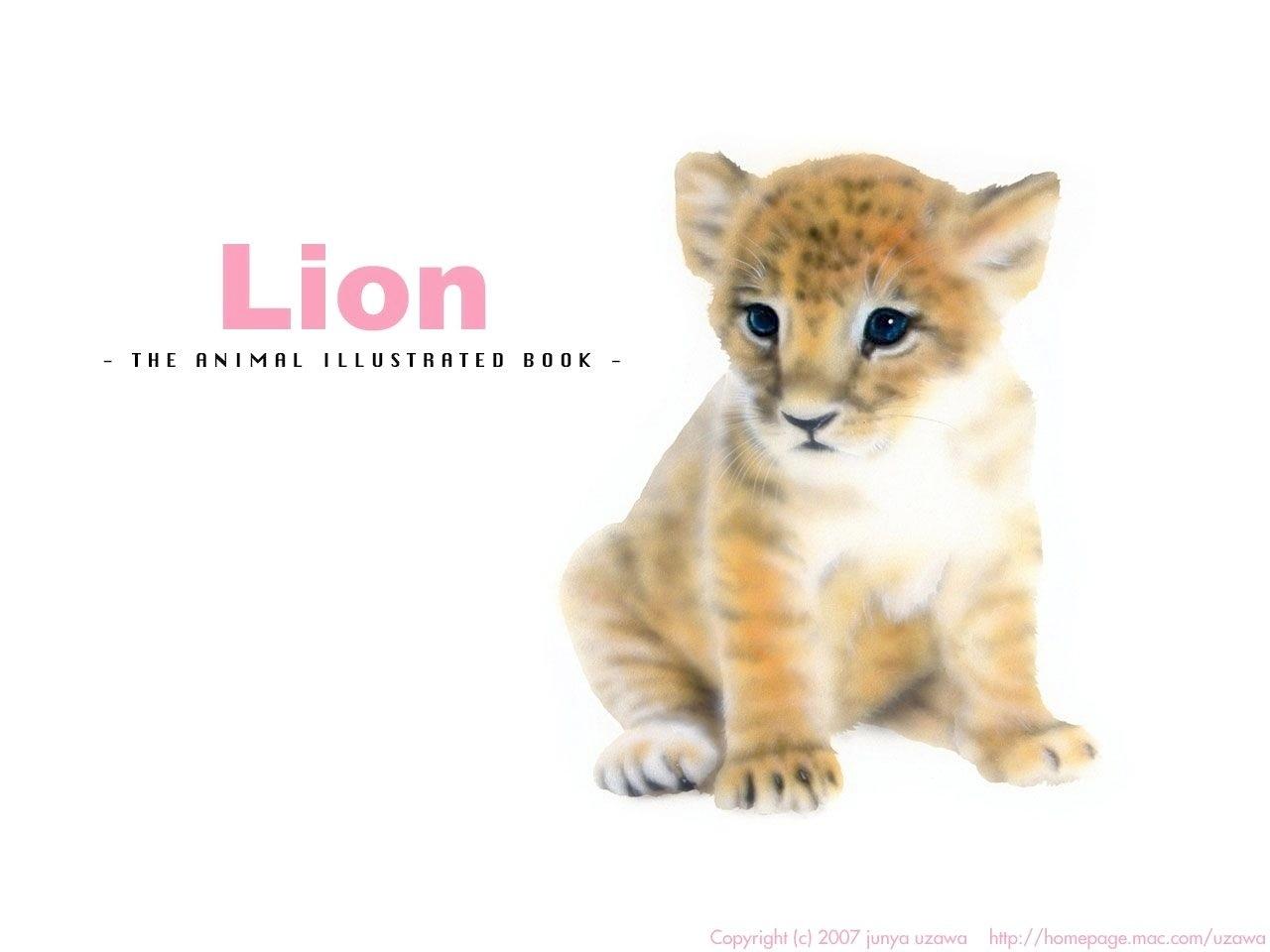 リアリズム絵画/動物の絵(動物イラスト)/ライオン/おすわりする