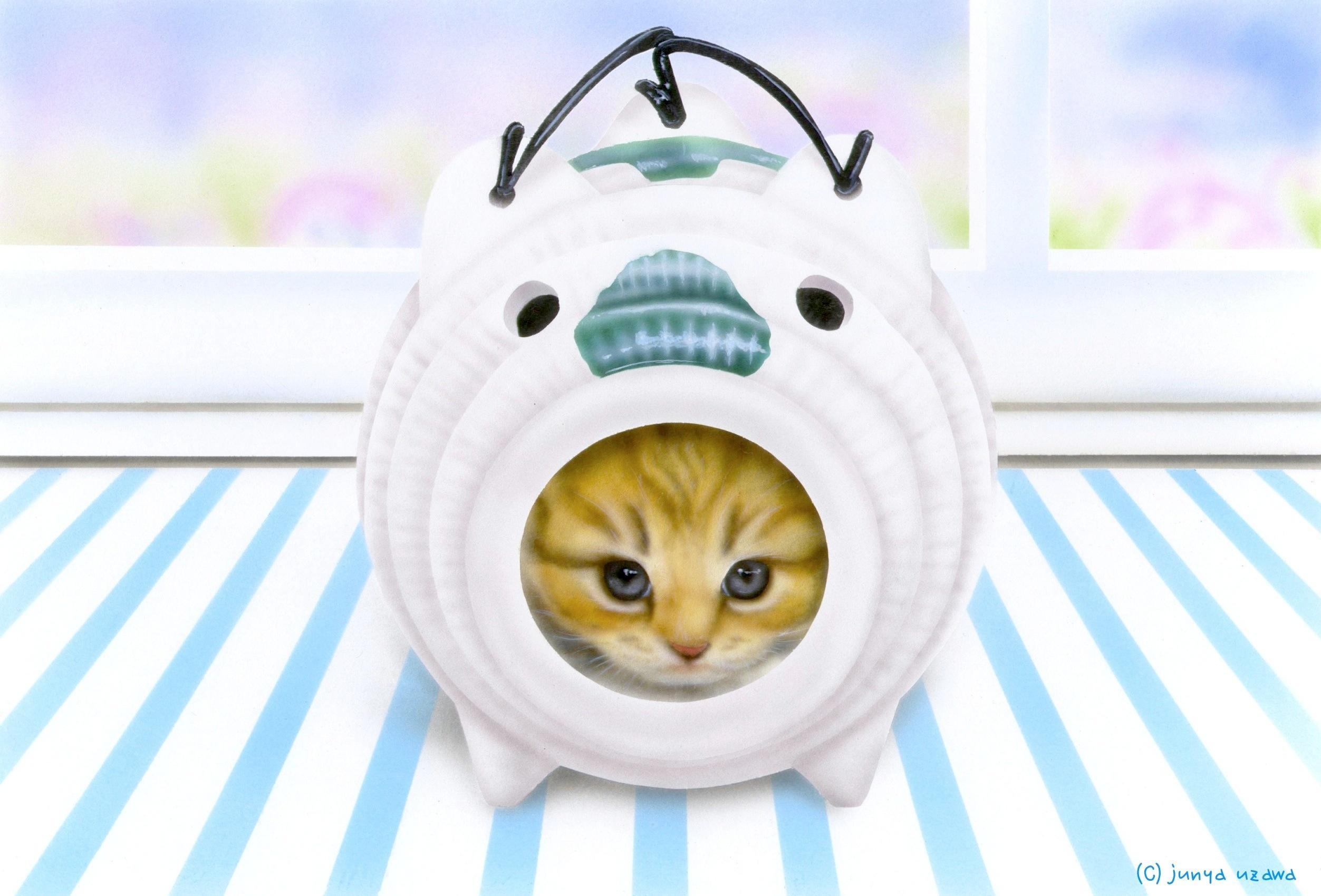 子猫の絵:Ice pop
