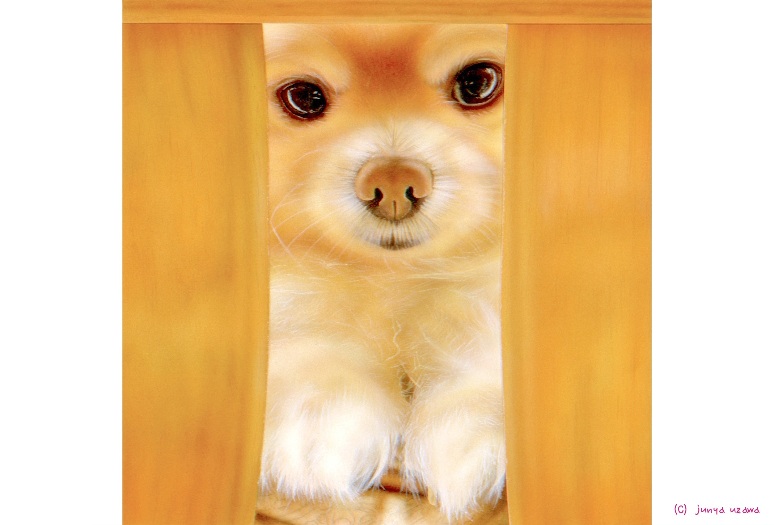 junya.blog(猫×犬)リアリズム絵画