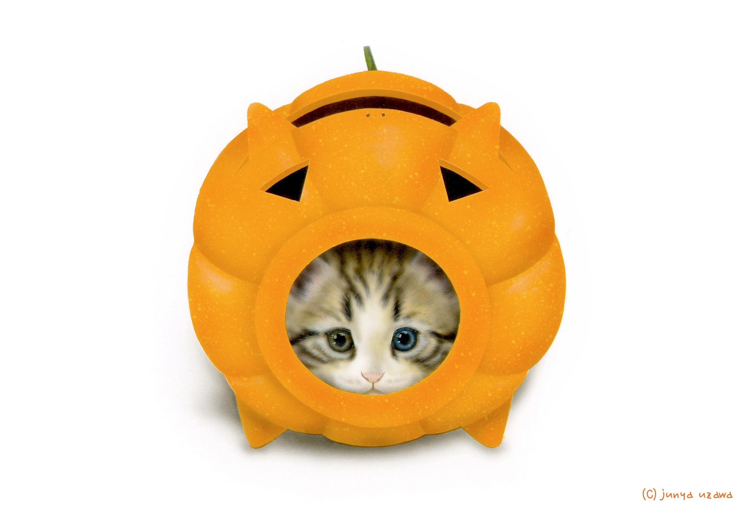 子猫の絵:かとりにゃんこう -Halloween version-