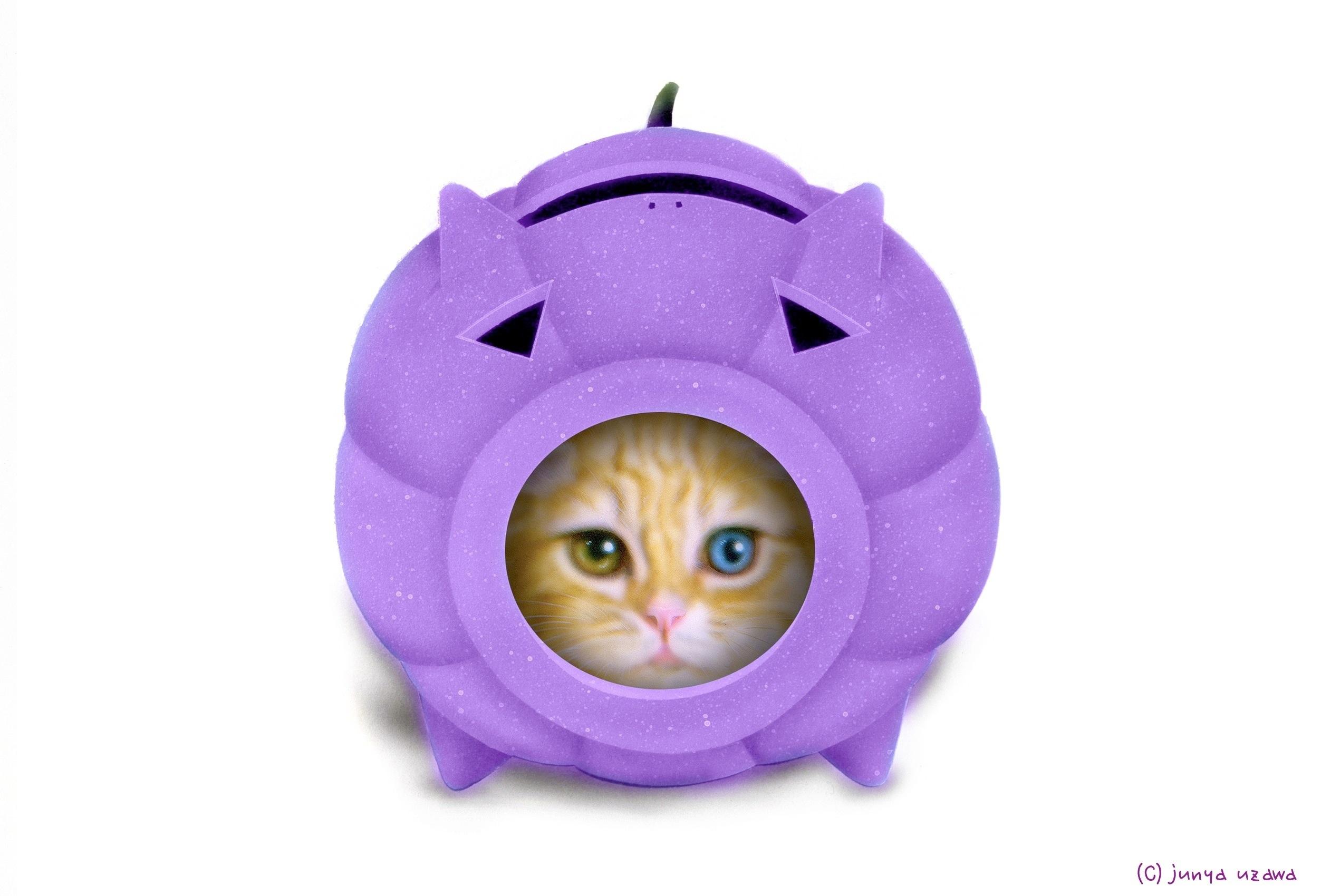 子猫の絵:かとりにゃんこう -Halloween version- Scottish Fold
