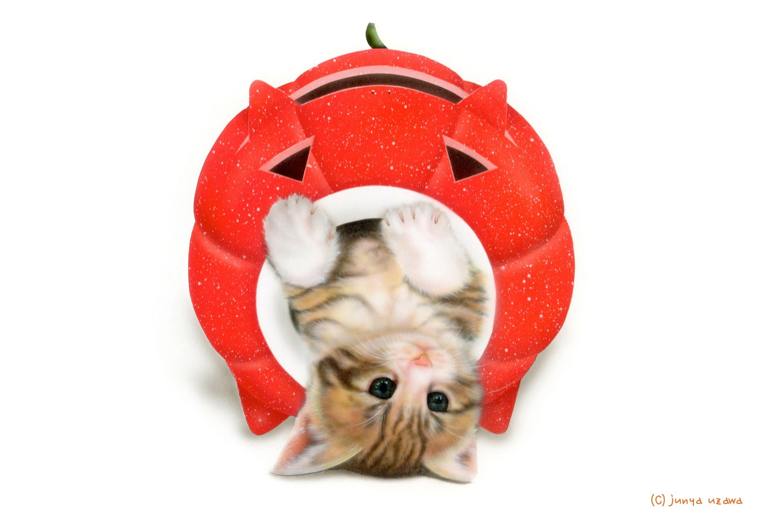 子猫の絵:かとりにゃんこう -Christmas version- サンタクロースカラー