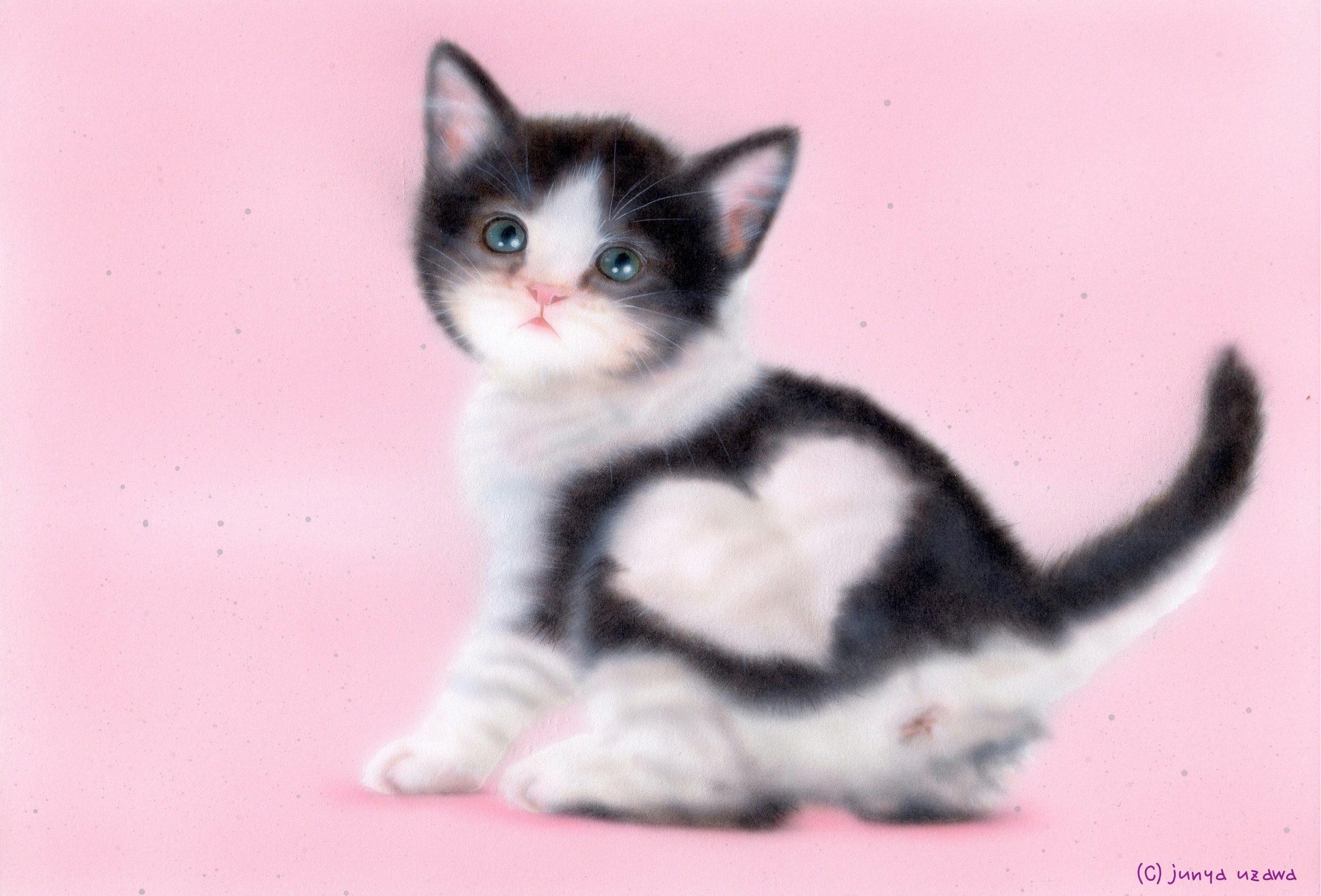 子猫の絵:「ハート模様の子猫」B.K.S.N:Hachiware Heart