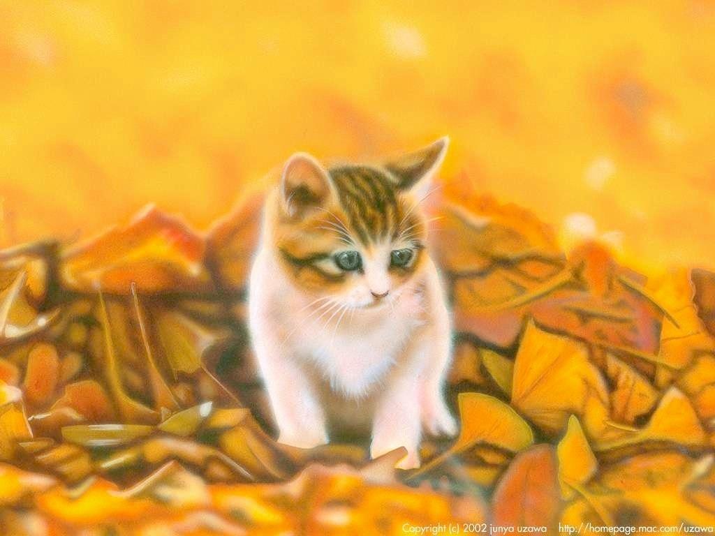 子猫の絵:秋のにゃんこ